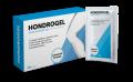 Hondrogel – sua cartilagem e articulações serão como novas